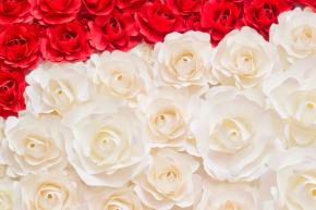 фотообои 3D бумажные цветы 18623